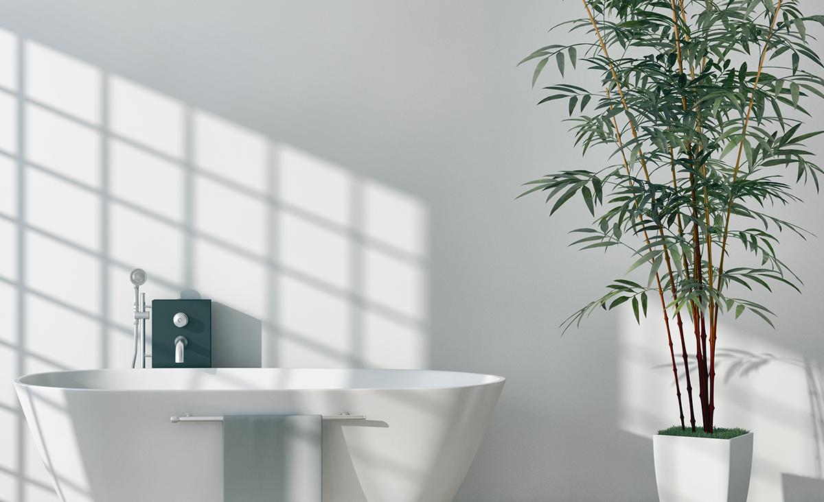 De beste badkamerplanten voor een botanic look bad body